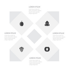 Icon food set of plum bramble leaf and other vector