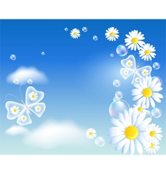 Transparent butterflies and daisy vector image