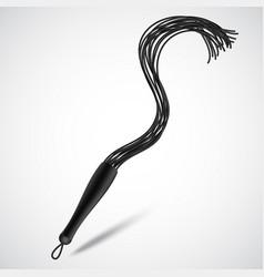 black leather whip for sadomasochism bondage and vector image
