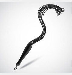 Black leather whip for sadomasochism bondage and vector