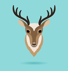 Deer head on turquoise background vector