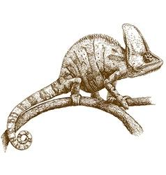 Engraving chameleon vector