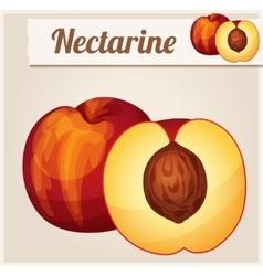 Nectarine detailed icon vector
