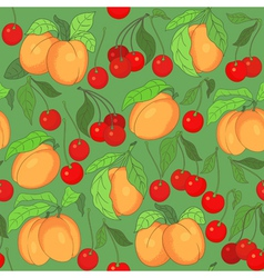 seamless pattern with cherries and apricots vector image vector image