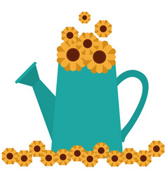 White background with watering can and sunflowers vector