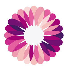 purple circular frame formed by petals with white vector image