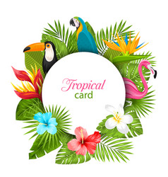 Summer card with tropical plants hibiscus vector