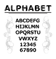 Alphabet with lines vector image vector image