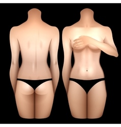 European women body vector image