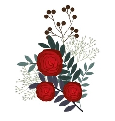 floral decoration isolated icon design vector image vector image
