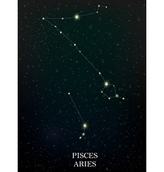 Pisces and aries constellation vector