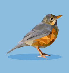 rufous-bellied thrush in polygon style vector image vector image