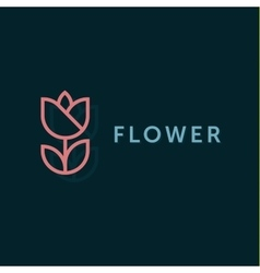 Simple and graceful floral monogram design vector
