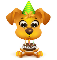 Birthday yellow dog holding cake vector