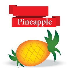 fresh pineapple on white background vector image vector image
