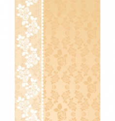Lace beige vector