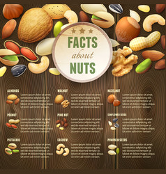 Nuts on wooden background vector