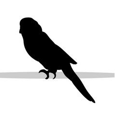 parrot budgerigar bird black silhouette animal vector image