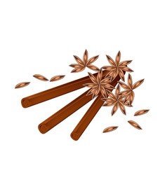 Stack of dried star anise and cinnamon sticks vector