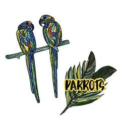 with parrots vector image vector image