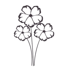 Delicate flower drawing icon image vector