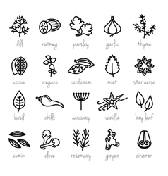 Collection of herbs line icons vector
