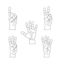 human hand showing numbers thin line set vector image