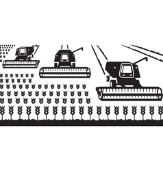 Combine harvesters gathering wheat vector