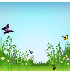 Meadow and butterflies vector
