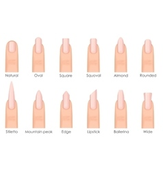 Different fashion nail shapes set kinds of nails vector