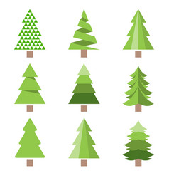 different style of pine tree icon flat design vector image