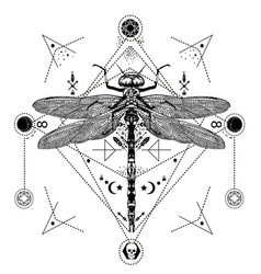 Dragonfly black and white tattoo vector