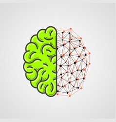 Human brain with network part vector