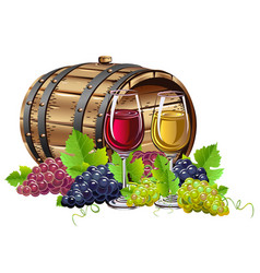 wine barrel with bunches of grapes vector image