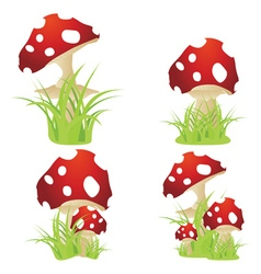 Red mushroom with grass vector