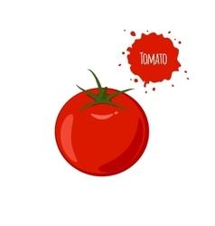 Ripe juicy tomato isolated on white background vector image