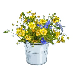 Small bouquet with meadow flowers vector image vector image