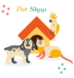 bright images of domestic animals parrot dog and vector image