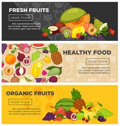 fresh farm fruits berries healthy organic food vector image