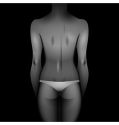 Women body template vector image vector image