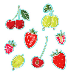 A set of different berries on a white background vector