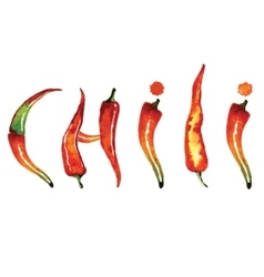 Red chili pepper isolated on white background vector