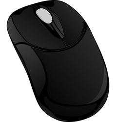 Black computer mouse vector image