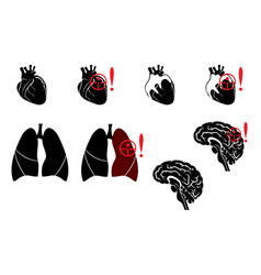 Lungsheart and brain vector