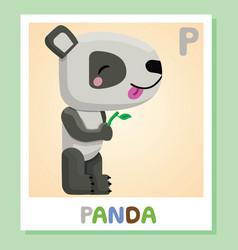 p is for panda letter p panda cute vector image