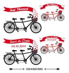 Wedding tandem bicycles set vector