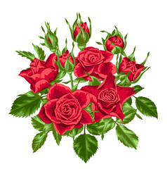 Decorative element with red roses beautiful vector