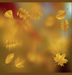 autumn01 vector image