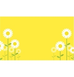 Collection of flower spring backgrounds vector