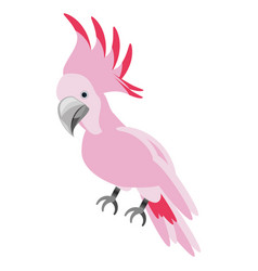 Isolated cute pink bird vector